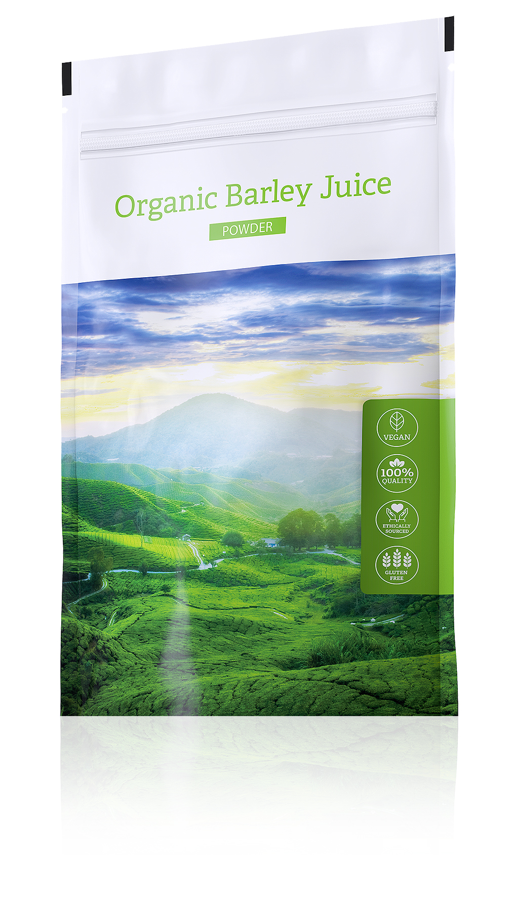 Energy Organic Barley Juice Powder, 100 g