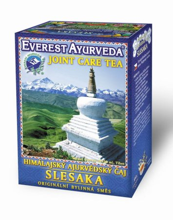 Everest Ayurveda Slesaka, 100g